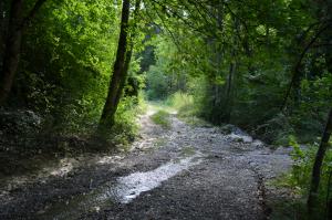 chemin cascade2